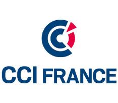 Logo de la CCI France